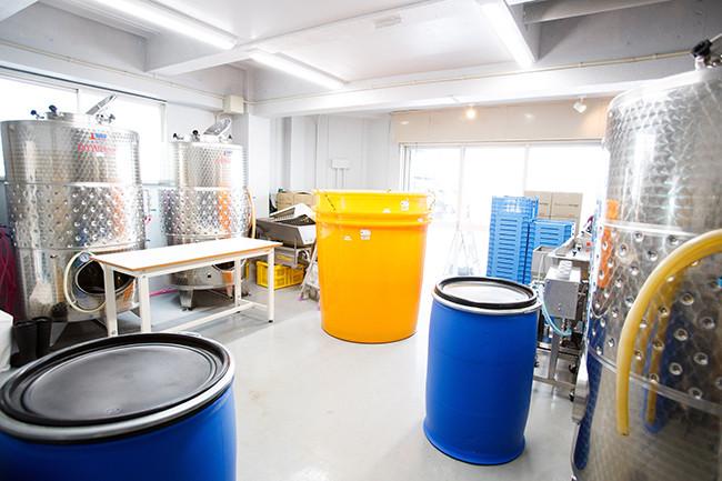 ↑大型のステンレス発酵タンクと樹脂製の小型タンクなどが並ぶ醸造スペース。大型のタンクに入り切らなかった果汁を小型に入れるなど、組み合わせを工夫しながら作業を進める
