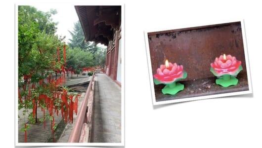 仏教に由来する「断捨離」の提唱者がルーツに触れる旅