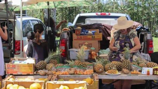 食欲の秋にでなくても、いつか行きたい! 現地在住ライターが教えるハワイ「ファーマーズマーケット」の楽しみ方