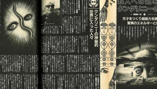 【ムー昭和オカルト回顧録】80年代の「瞑想ブーム」と僕の「TM教室体験記」続き