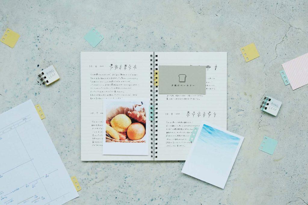 ↑カンミ堂「RING LEAF」385円(税込):リング穴付きの付箋パーツ。書類やプリントを、リングノートやルーズリーフに綴じられるようにする。粘着部は再剥離でき、紙に傷をつけずに剥がせる