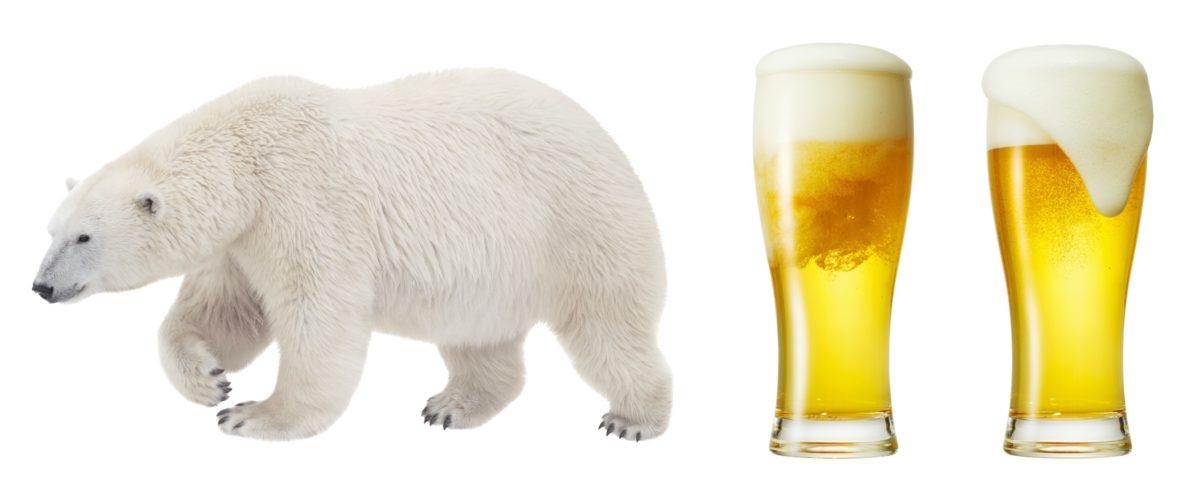 ↑乱反射によるユポ紙の白色度が上がるのは、ホッキョクグマの毛やビールの泡が白く見える原理と同じ。黒い皮膚と透明の毛を持つホッキョクグマは、太陽光と反射光が毛内部の空洞を乱反射することで毛自体が白く見えています