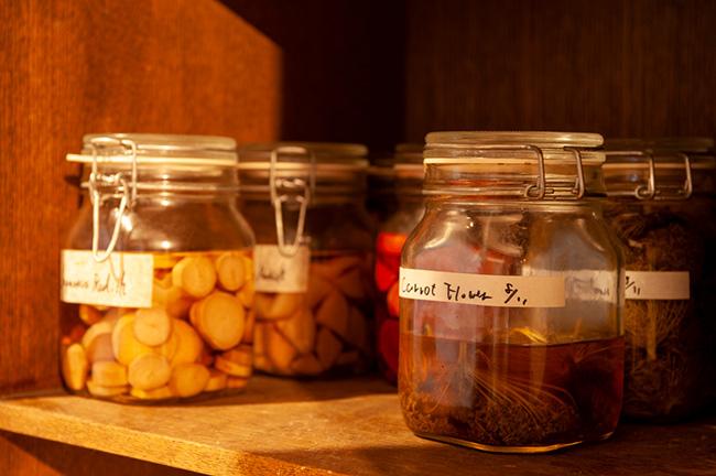 ↑ターメリックやタンポポ、ピクルス、豆板醤など、棚には自家製の発酵調味料が所狭しと並ぶ